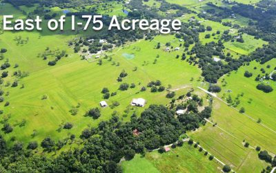 Sales Activity: East of I-75 Acreage